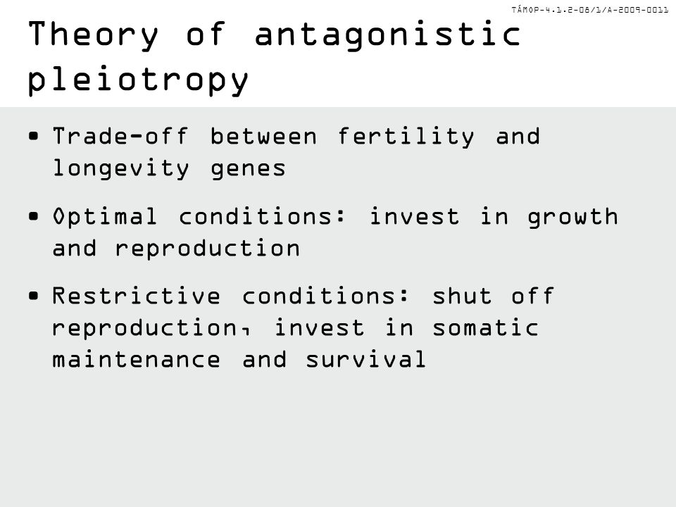 TÁMOP-4.1.2-08/1/A-2009-0011 Trade-off between fertility and longevity genes Optimal conditions: invest in growth and reproduction Restrictive conditions: shut off reproduction, invest in somatic maintenance and survival Theory of antagonistic pleiotropy