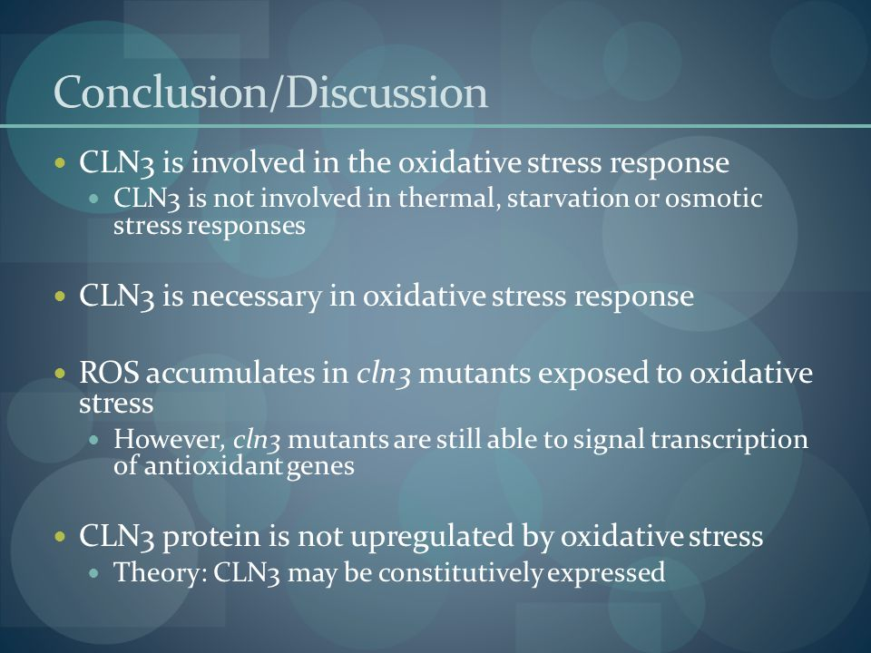 Conclusion/Discussion CLN3 is involved in the oxidative stress response CLN3 is not involved in thermal, starvation or osmotic stress responses CLN3 is necessary in oxidative stress response ROS accumulates in cln3 mutants exposed to oxidative stress However, cln3 mutants are still able to signal transcription of antioxidant genes CLN3 protein is not upregulated by oxidative stress Theory: CLN3 may be constitutively expressed