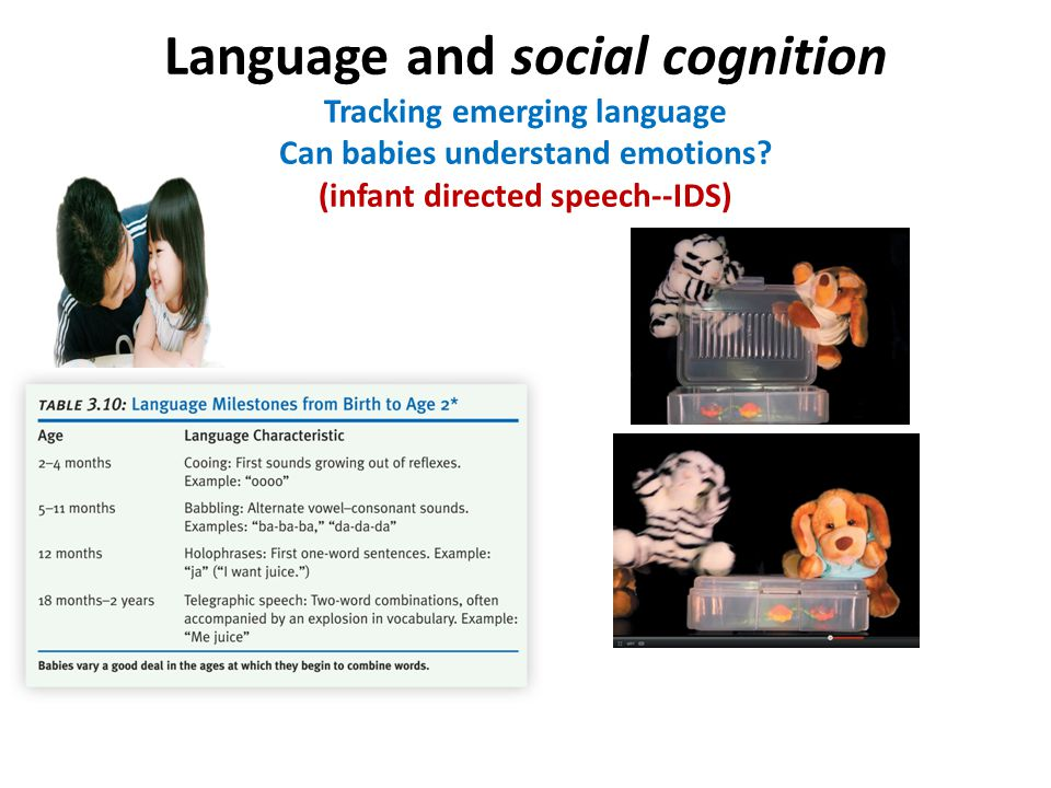 Language and social cognition Tracking emerging language Can babies understand emotions.