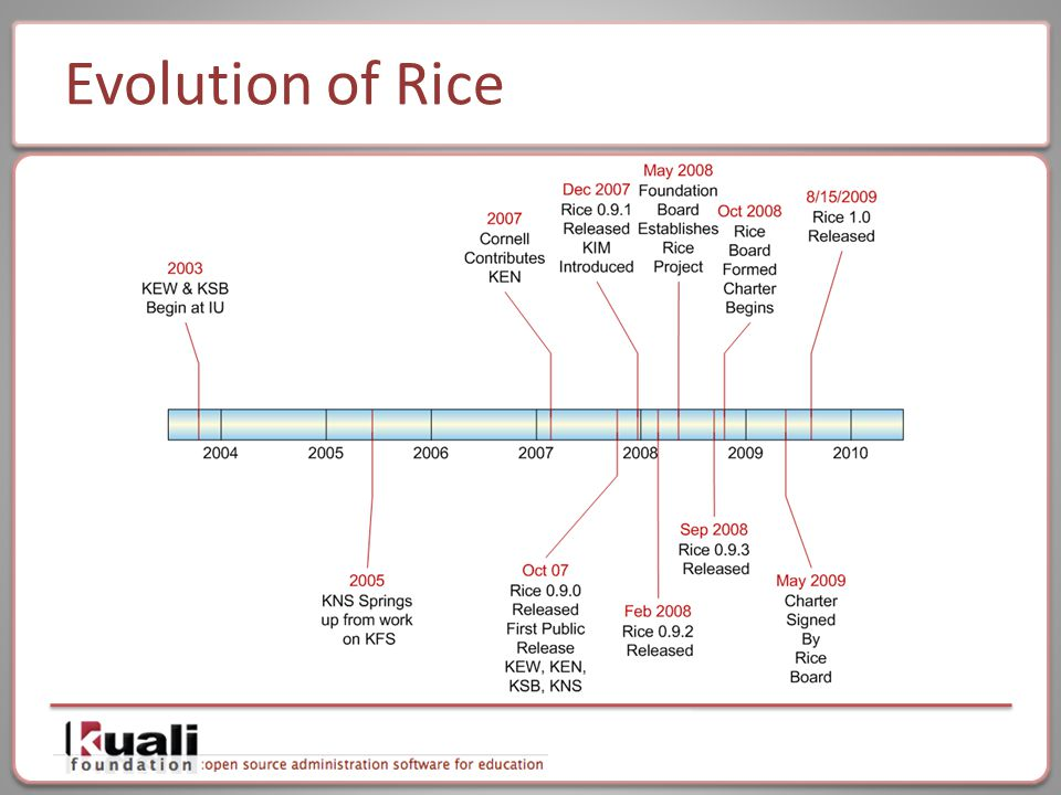 Evolution of Rice