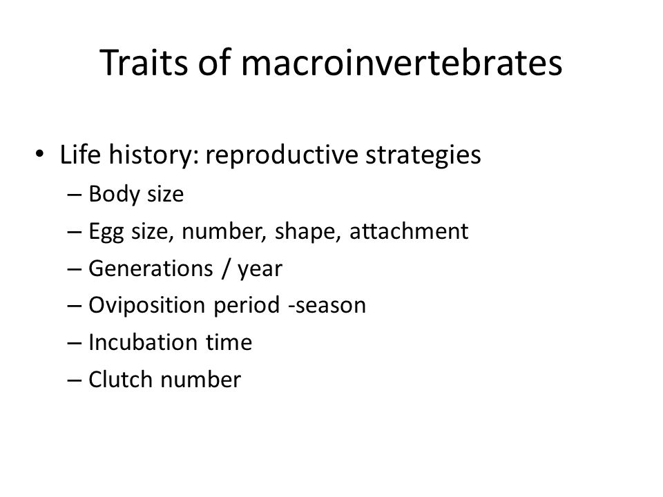 Traits of macroinvertebrates Life history: reproductive strategies – Body size – Egg size, number, shape, attachment – Generations / year – Ovipositio