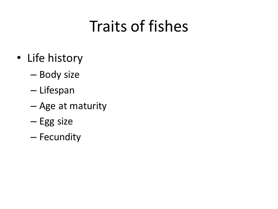 Traits of fishes Life history – Body size – Lifespan – Age at maturity – Egg size – Fecundity