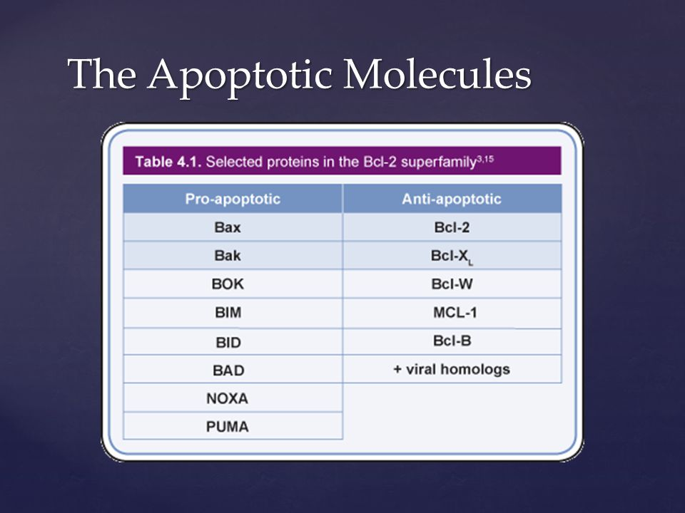 The Intrinsic Pathway  Mitochondrial pathway initiated from within cell  Activated in response to signals resulting from DNA damage, loss of cell- survival factors, or other types of severe cell stress  Pro-apoptotic proteins are released from the mitochondria  The intrinsic pathway hinges on the balance of activity between pro- and anti-apoptotic signals of the Bcl-2 family