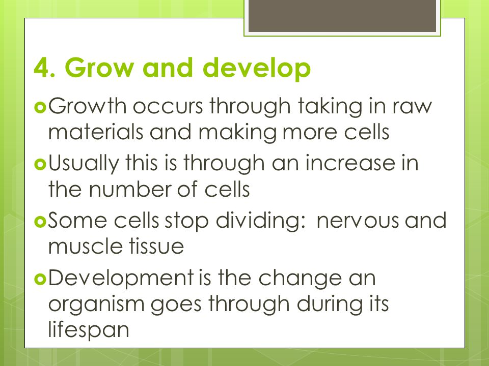 4. Grow and develop  Growth occurs through taking in raw materials and making more cells  Usually this is through an increase in the number of cells