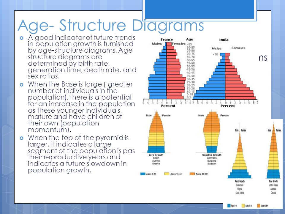 Age- Structure Diagrams  A good indicator of future trends in population growth is furnished by age-structure diagrams. Age structure diagrams are de