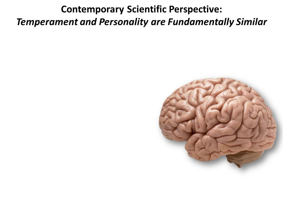 Contemporary Scientific Perspective: Temperament and Personality are Fundamentally Similar