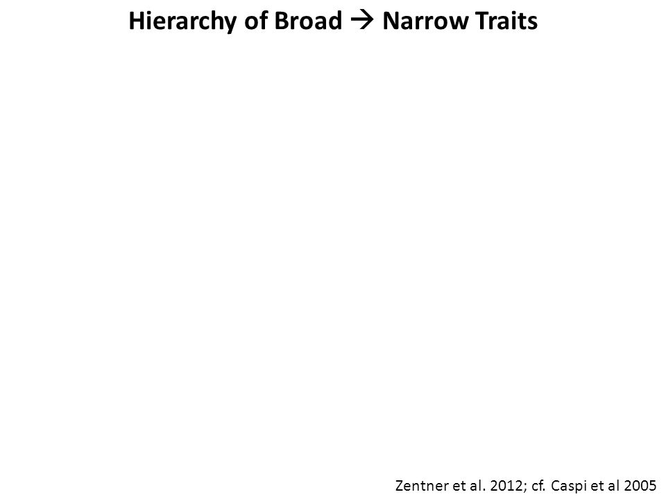 Hierarchy of Broad  Narrow Traits Zentner et al. 2012; cf. Caspi et al 2005