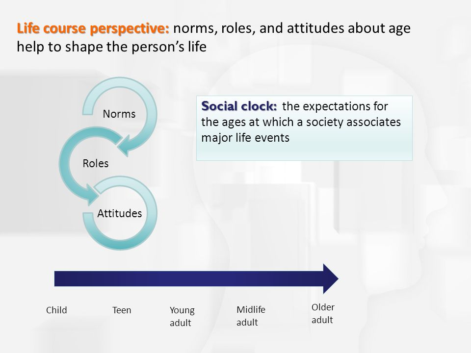 Norms Roles Attitudes Life course perspective: Life course perspective: norms, roles, and attitudes about age help to shape the person's life ChildTeenYoung adult Midlife adult Older adult Social clock: Social clock: the expectations for the ages at which a society associates major life events