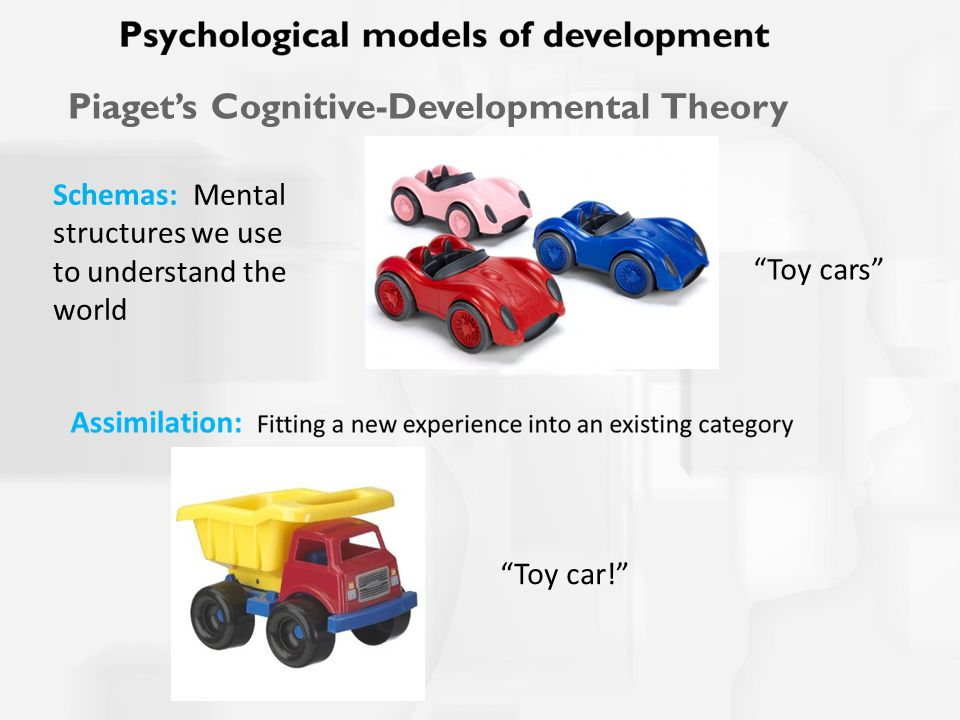 Schemas: Mental structures we use to understand the world Toy cars Piaget's Cognitive-Developmental Theory Toy car!