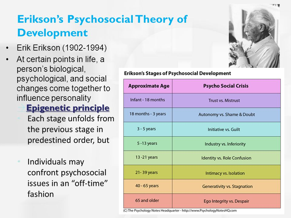 Erikson's Psychosocial Theory of Development Erik Erikson (1902-1994) At certain points in life, a person's biological, psychological, and social changes come together to influence personality