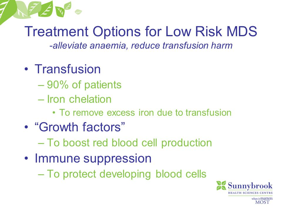Treatment Options for Low Risk MDS -alleviate anaemia, reduce transfusion harm Transfusion –90% of patients –Iron chelation To remove excess iron due to transfusion Growth factors –To boost red blood cell production Immune suppression –To protect developing blood cells