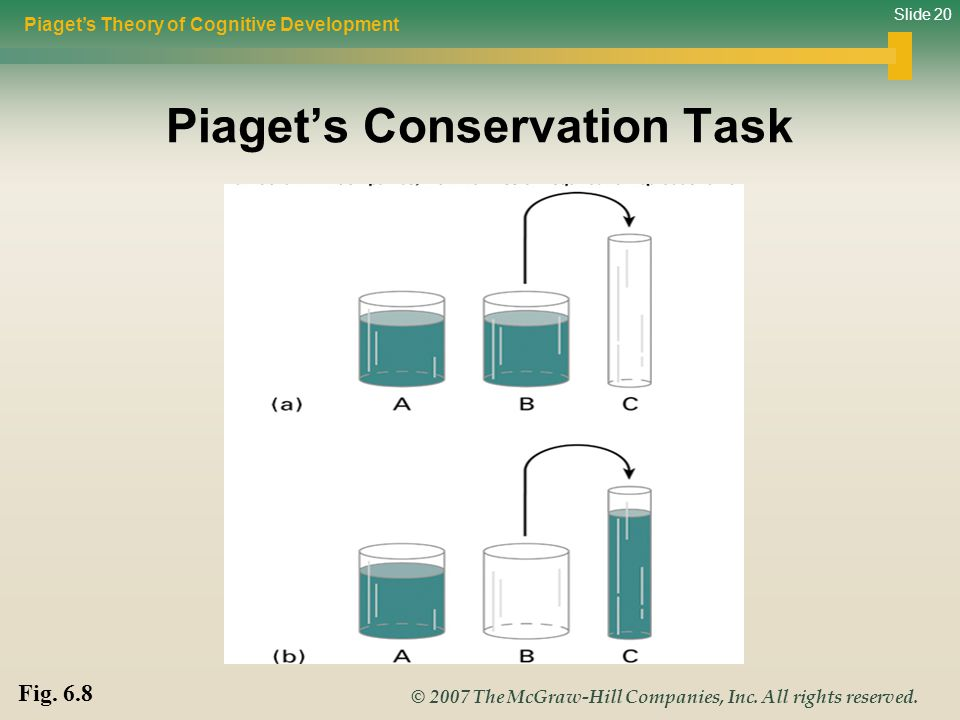 Slide 20 © 2007 The McGraw-Hill Companies, Inc. All rights reserved. Piaget's Conservation Task Piaget's Theory of Cognitive Development Fig. 6.8