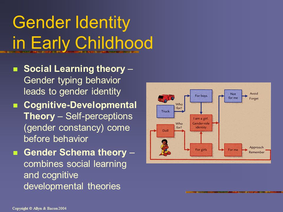 Copyright © Allyn & Bacon 2004 Gender Identity in Early Childhood Social Learning theory – Gender typing behavior leads to gender identity Cognitive-D