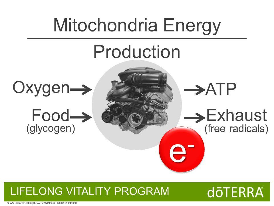 Oxygen Food (glycogen) ATP Exhaust (free radicals) e-e-e-e- e-e-e-e- Mitochondria Energy Production LIFELONG VITALITY PROGRAM © 2010 dōTERRA Holdings,