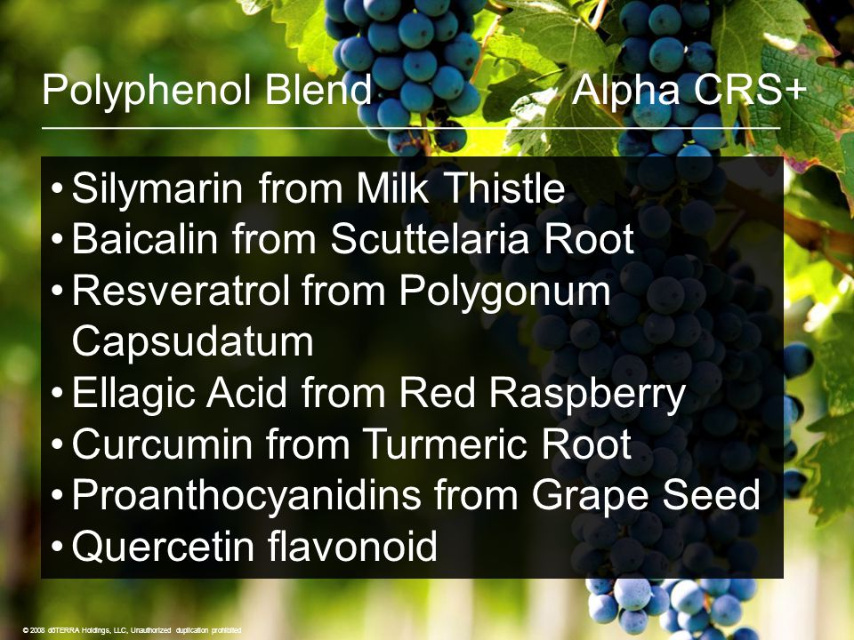 Polyphenol Blend Alpha CRS+ © 2008 dōTERRA Holdings, LLC, Unauthorized duplication prohibited Silymarin from Milk Thistle Baicalin from Scuttelaria Root Resveratrol from Polygonum Capsudatum Ellagic Acid from Red Raspberry Curcumin from Turmeric Root Proanthocyanidins from Grape Seed Quercetin flavonoid