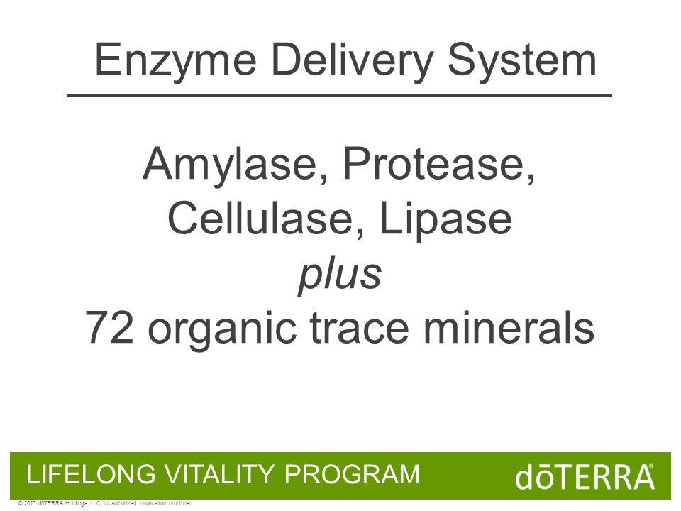 Enzyme Delivery System Amylase, Protease, Cellulase, Lipase plus 72 organic trace minerals LIFELONG VITALITY PROGRAM © 2010 dōTERRA Holdings, LLC, Unauthorized duplication prohibited