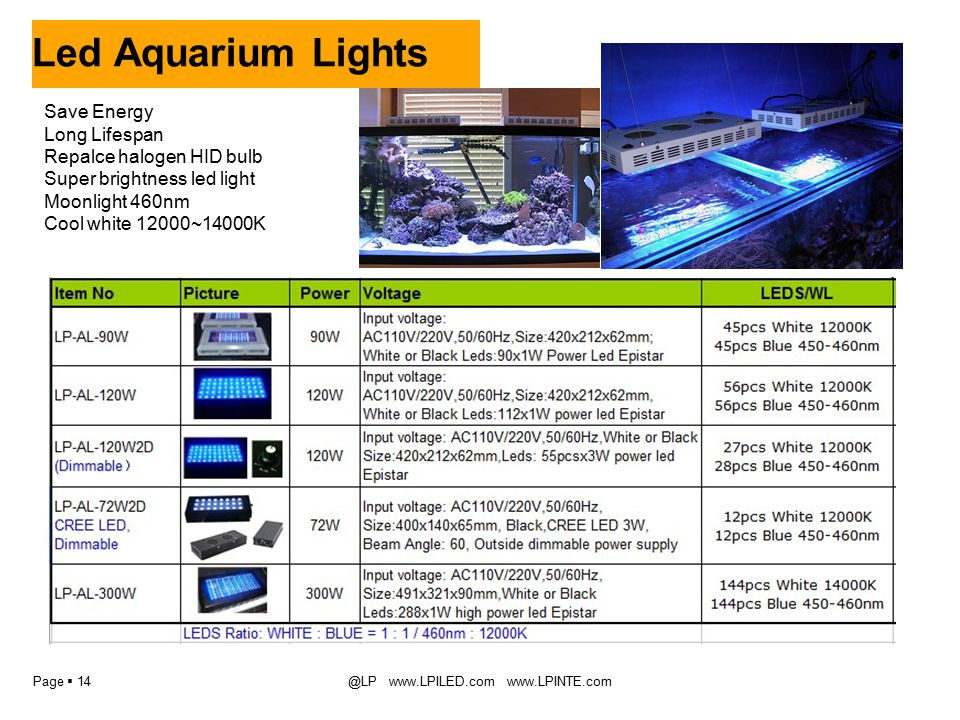 Page  14@LP www.LPILED.com www.LPINTE.com Led Aquarium Lights Save Energy Long Lifespan Repalce halogen HID bulb Super brightness led light Moonlight 460nm Cool white 12000~14000K