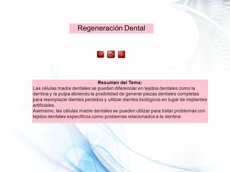 Regeneración Dental Resumen del Tema: Las células madre dentales se pueden diferenciar en tejidos dentales como la dentina y la pulpa abriendo la posi