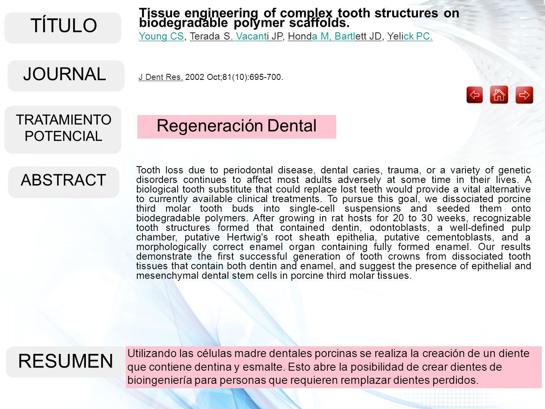 TÍTULO ABSTRACT RESUMEN Utilizando las células madre dentales porcinas se realiza la creación de un diente que contiene dentina y esmalte. Esto abre l