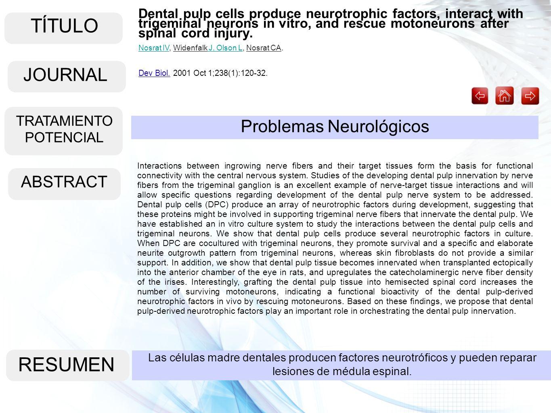 TÍTULO ABSTRACT RESUMEN Las células madre dentales producen factores neurotróficos y pueden reparar lesiones de médula espinal. Problemas Neurológicos