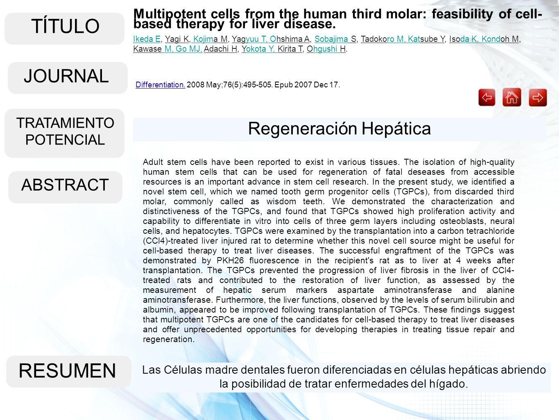 TÍTULO ABSTRACT RESUMEN Las Células madre dentales fueron diferenciadas en células hepáticas abriendo la posibilidad de tratar enfermedades del hígado