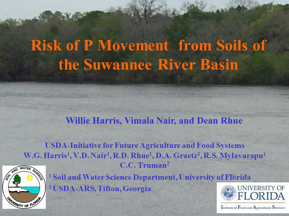Risk of P Movement from Soils of the Suwannee River Basin W.G.
