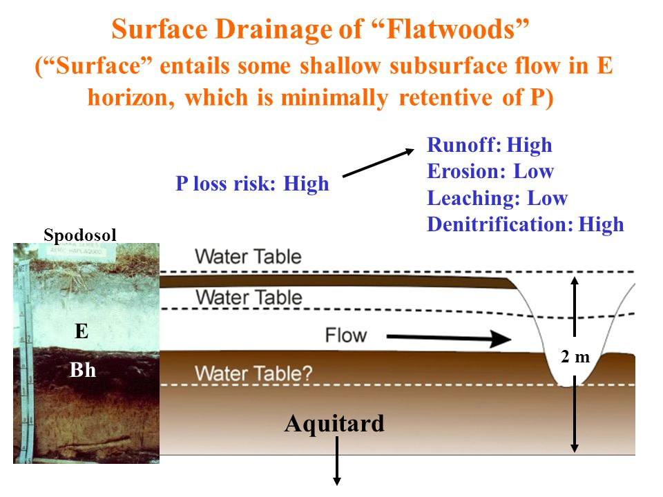 Subsurface Drainage (Karst) (Flow in soil zone mainly vertical) E E Bt EntisolUltisol 10 m Runoff: Low Erosion: Low Leaching: Variable Denitrification: Low P loss risk: Variable