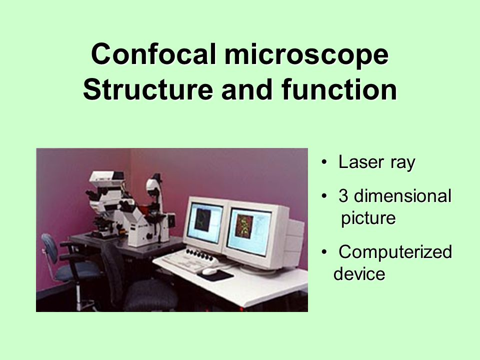 Confocal microscope Structure and function Laser ray Laser ray 3 dimensional picture 3 dimensional picture Computerized device Computerized device