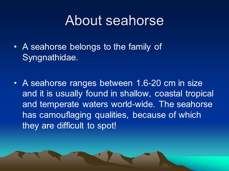 Some facts about the seahorse Seahorse differs in color, orange, red, yellow, green and even grey.