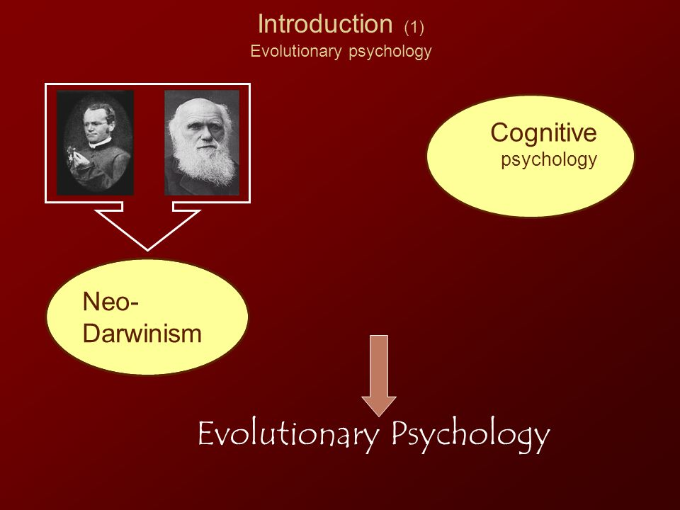 Introduction (12) evolution and decision Not a valid Social context Decision Secondary cue Imagine that the U.S.