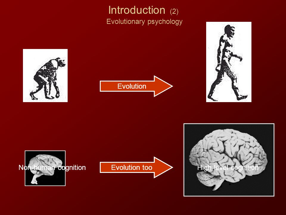 Introduction (2) Evolutionary psychology Evolution Evolution too Non-human cognitionHigh level cognition