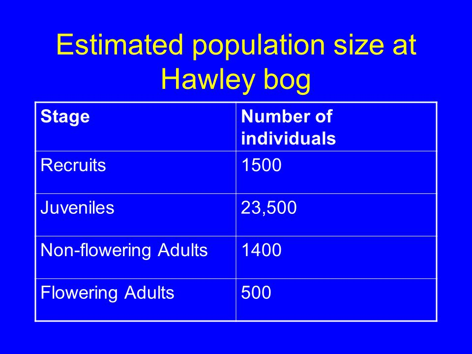 Estimated population size at Hawley bog StageNumber of individuals Recruits1500 Juveniles23,500 Non-flowering Adults1400 Flowering Adults500