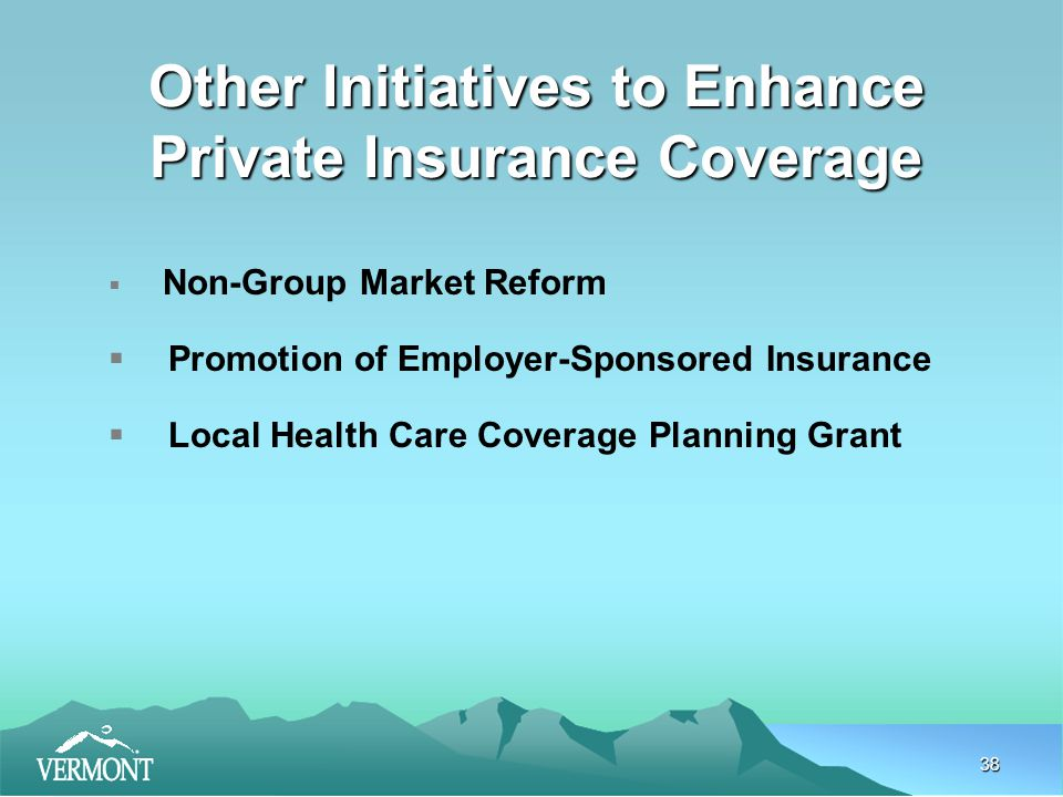 38 Other Initiatives to Enhance Private Insurance Coverage  Non-Group Market Reform  Promotion of Employer-Sponsored Insurance  Local Health Care Coverage Planning Grant