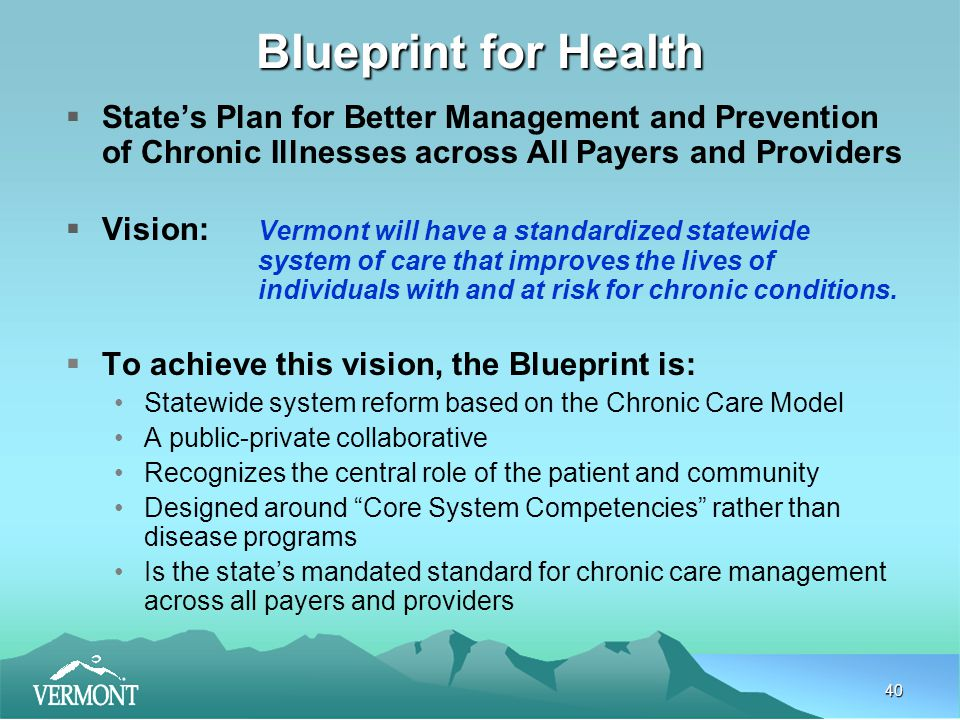 40 Blueprint for Health  State's Plan for Better Management and Prevention of Chronic Illnesses across All Payers and Providers  Vision: Vermont will have a standardized statewide system of care that improves the lives of individuals with and at risk for chronic conditions.