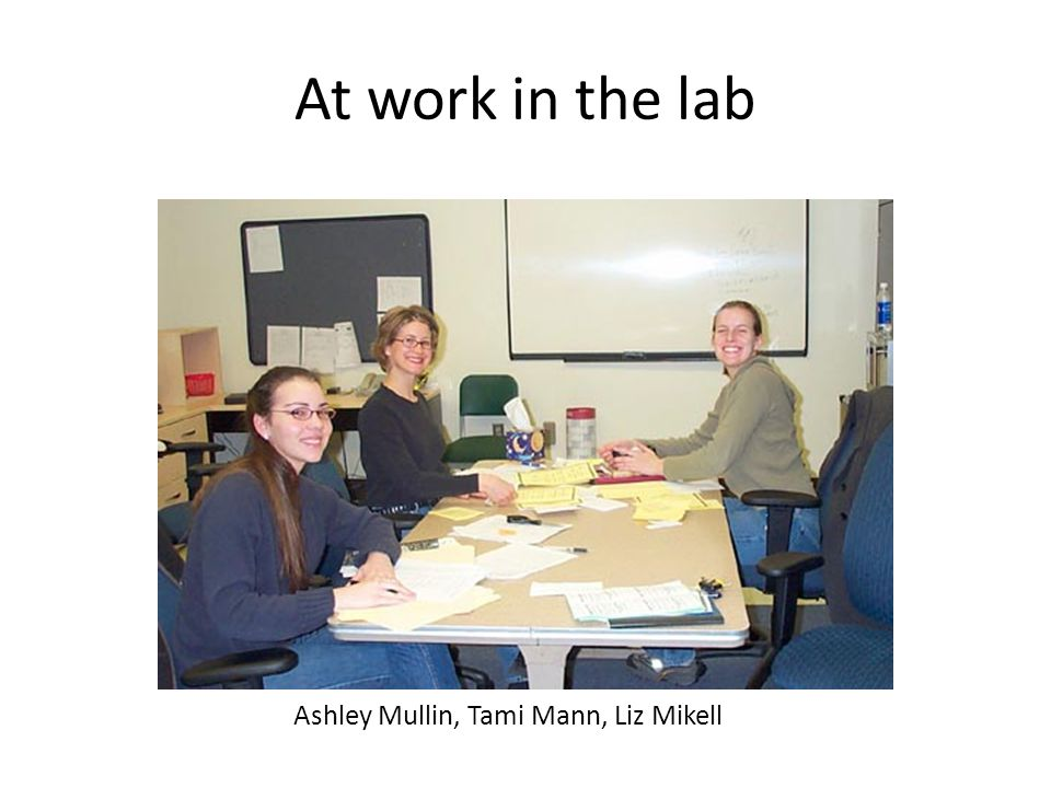 At work in the lab Ashley Mullin, Tami Mann, Liz Mikell