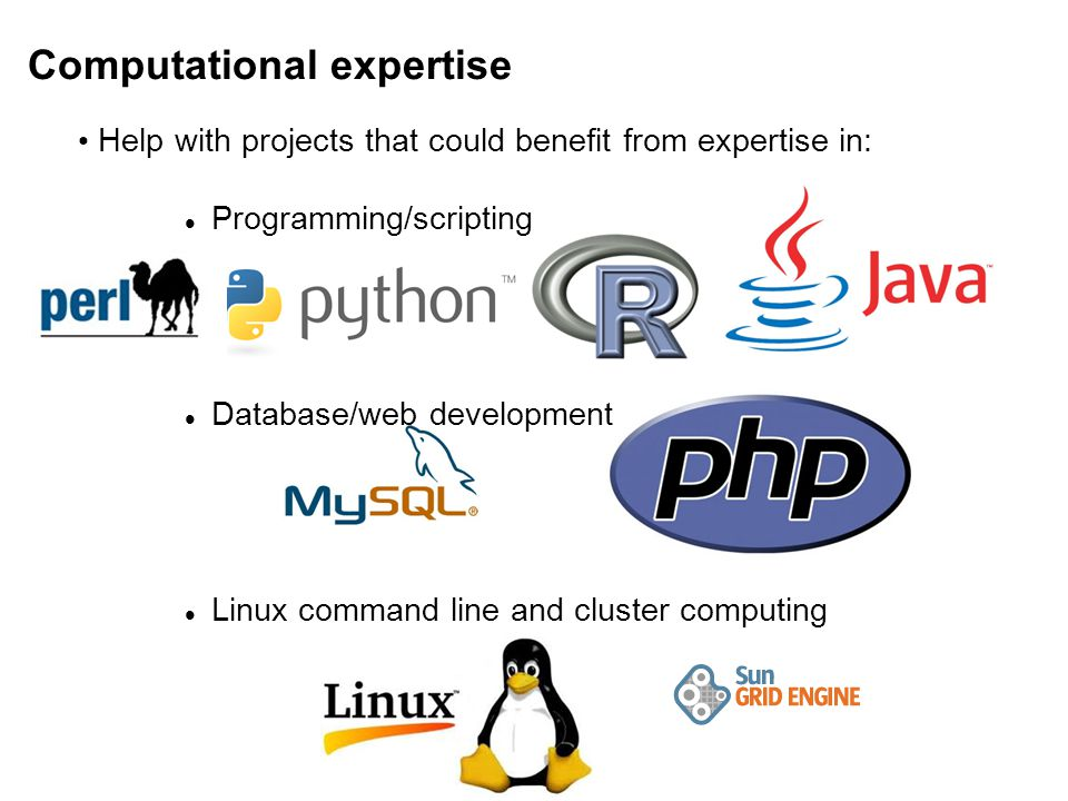 Help with projects that could benefit from expertise in: Programming/scripting Database/web development Linux command line and cluster computing