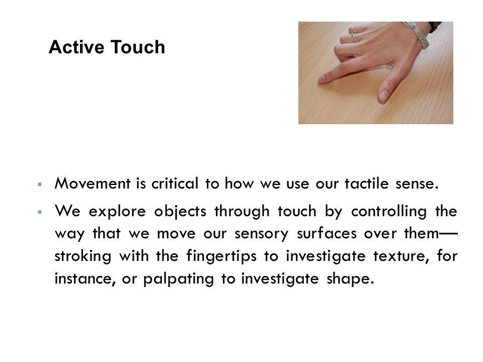  Movement is critical to how we use our tactile sense.