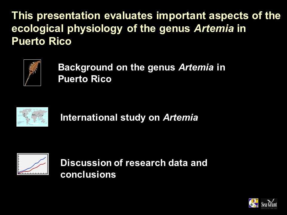 This presentation evaluates important aspects of the ecological physiology of the genus Artemia in Puerto Rico Discussion of research data and conclusions Background on the genus Artemia in Puerto Rico International study on Artemia