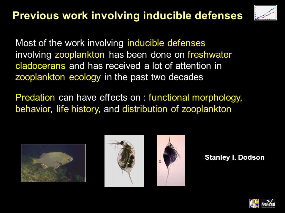 Most of the work involving inducible defenses involving zooplankton has been done on freshwater cladocerans and has received a lot of attention in zooplankton ecology in the past two decades Previous work involving inducible defenses Predation can have effects on : functional morphology, behavior, life history, and distribution of zooplankton Stanley I.