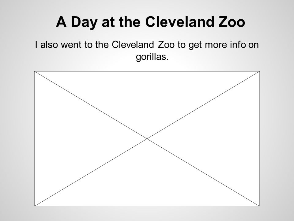 A Day at the Cleveland Zoo I also went to the Cleveland Zoo to get more info on gorillas.