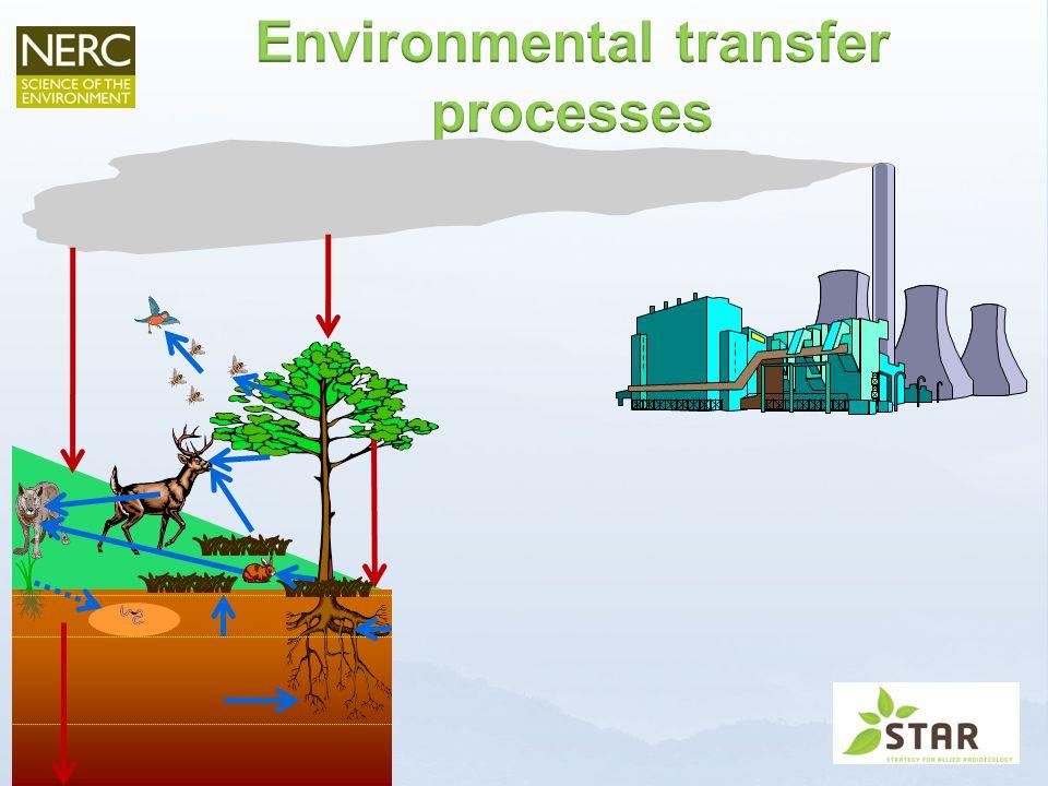 www.radioecology-exchange.org Terrestrial wildlife groups