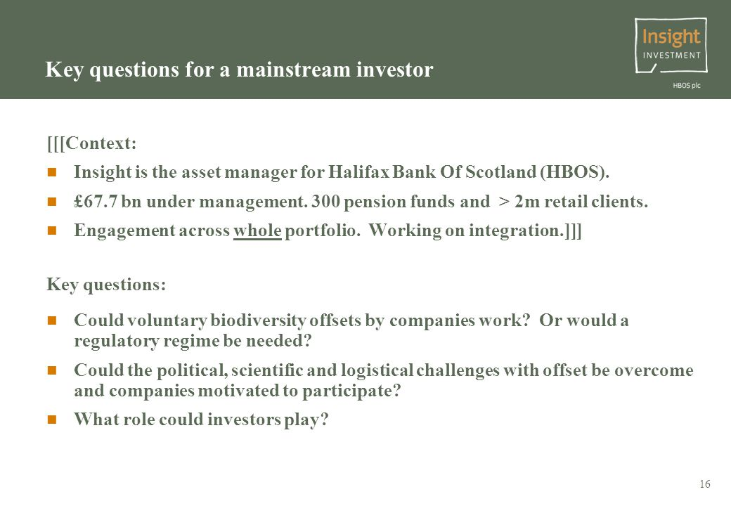 16 Key questions for a mainstream investor [[[Context: Insight is the asset manager for Halifax Bank Of Scotland (HBOS).