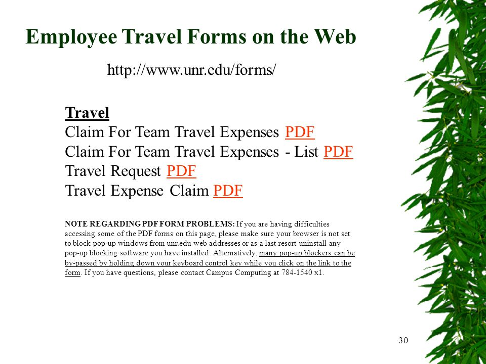 30 Employee Travel Forms on the Web http://www.unr.edu/forms/ Travel Claim For Team Travel Expenses PDFPDF Claim For Team Travel Expenses - List PDFPDF Travel Request PDFPDF Travel Expense Claim PDFPDF NOTE REGARDING PDF FORM PROBLEMS: If you are having difficulties accessing some of the PDF forms on this page, please make sure your browser is not set to block pop-up windows from unr.edu web addresses or as a last resort uninstall any pop-up blocking software you have installed.