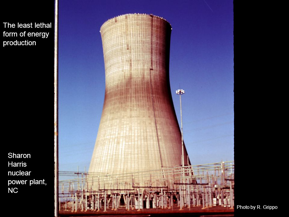 The least lethal form of energy production Sharon Harris nuclear power plant, NC Photo by R. Grippo