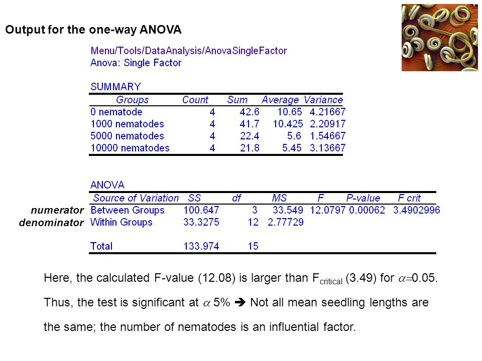 Output for the one-way ANOVA numerator denominator Here, the calculated F-value (12.08) is larger than F critical (3.49) for  0.05. Thus, the test i