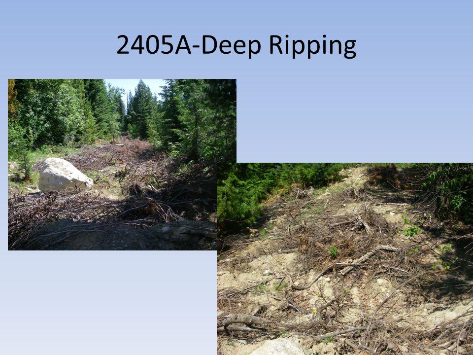 2405A-Deep Ripping