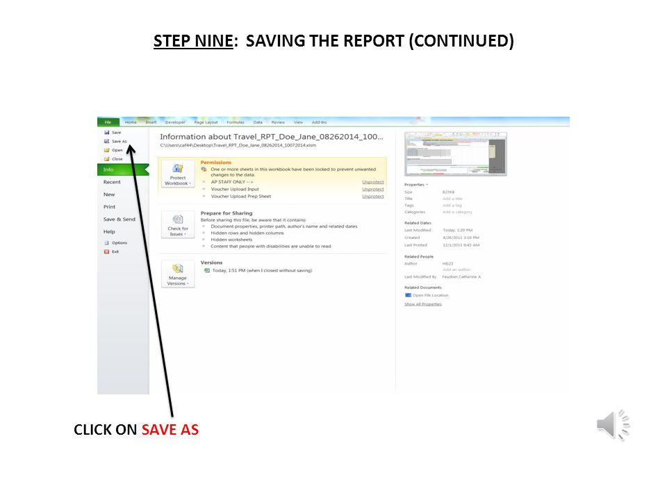 STEP NINE: SAVING THE REPORT CLICK ON FILE