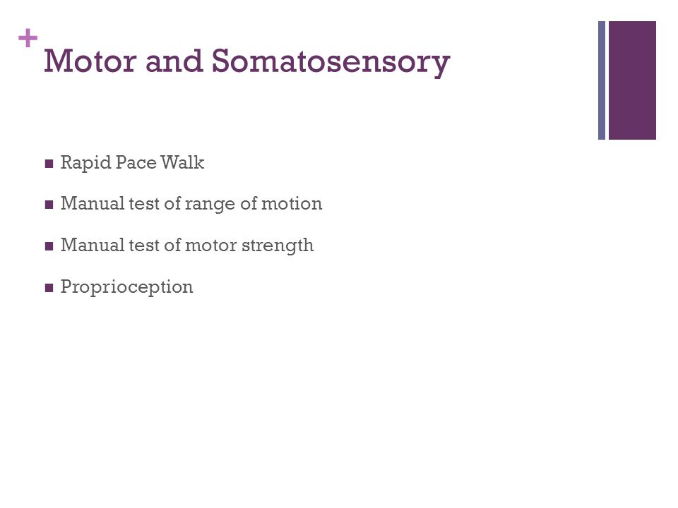 + Motor and Somatosensory Rapid Pace Walk Manual test of range of motion Manual test of motor strength Proprioception