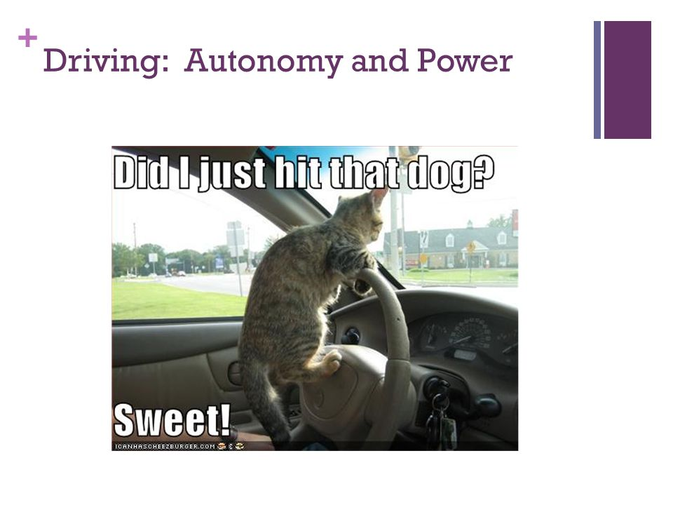 + Driving: Autonomy and Power