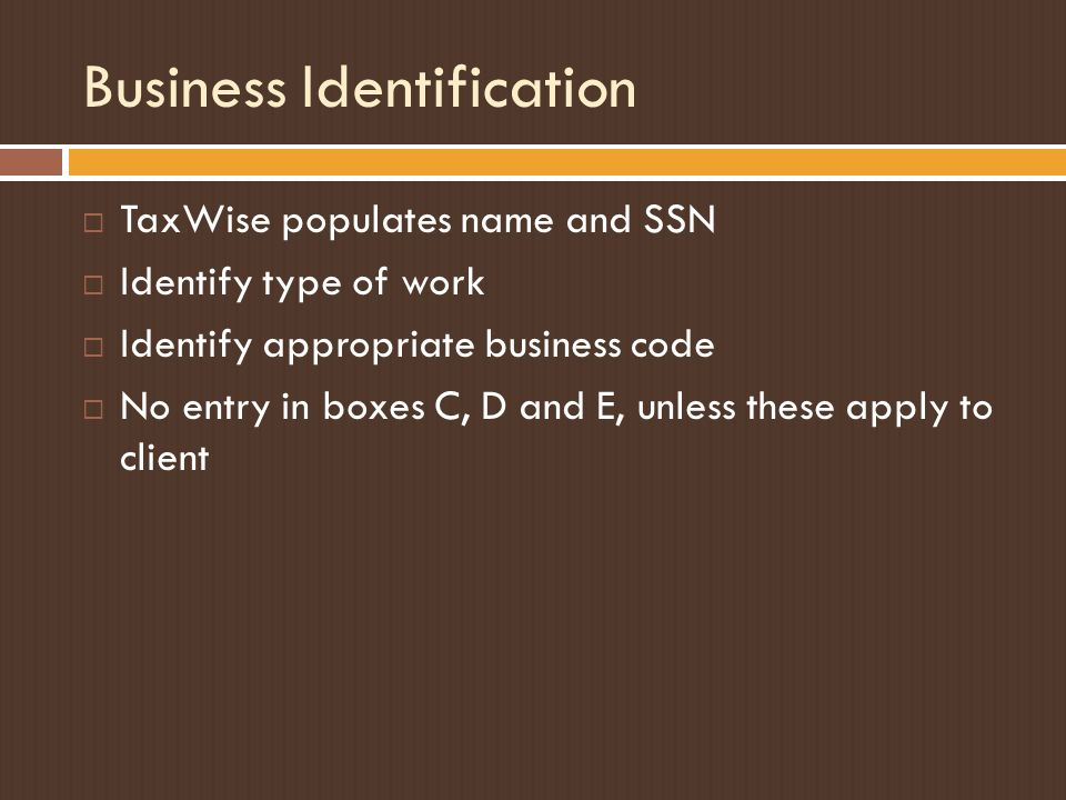 Business Identification  TaxWise populates name and SSN  Identify type of work  Identify appropriate business code  No entry in boxes C, D and E, unless these apply to client